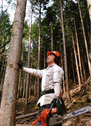 木曽ひのきの森